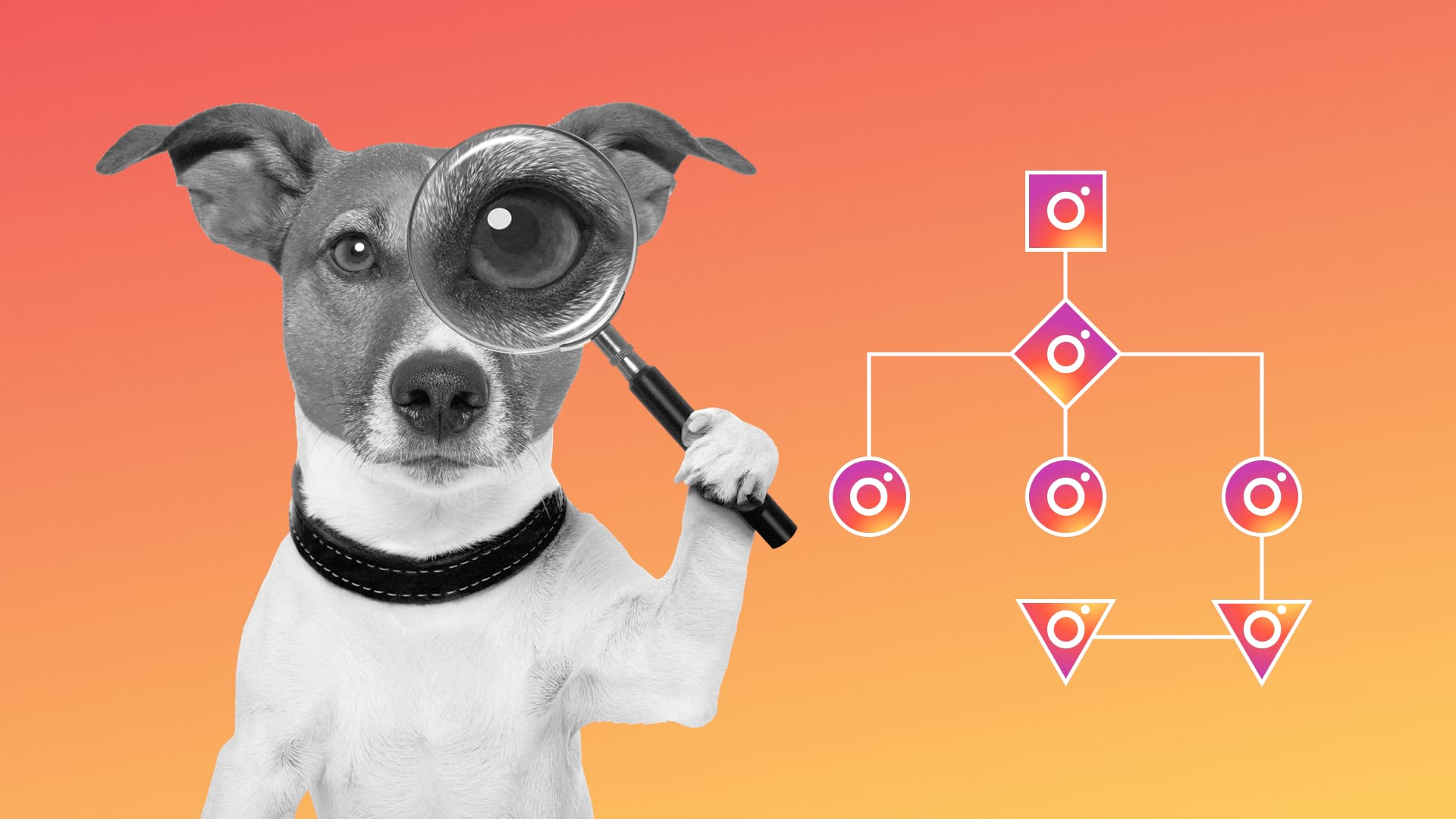 The algorithm for finding clients on Instagram